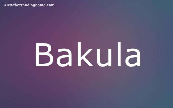 Baby Name Poster For Bakula