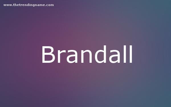 Baby Name Poster For Brandall