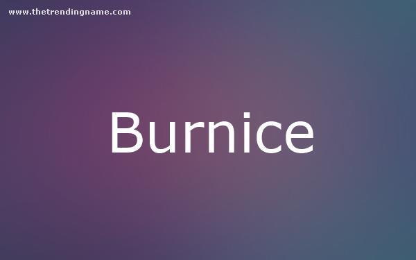 Baby Name Poster For Burnice