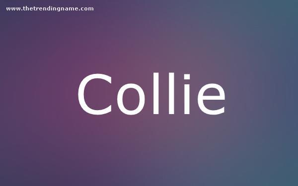 Baby Name Poster For Collie