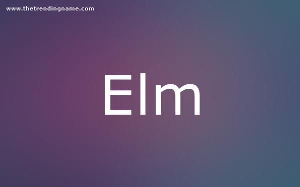 Baby Name Poster For Elm