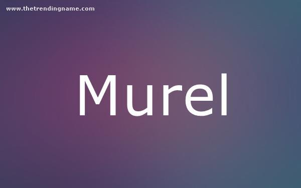 Baby Name Poster For Murel