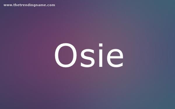 Baby Name Poster For Osie