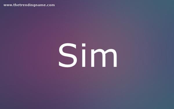 Baby Name Poster For Sim