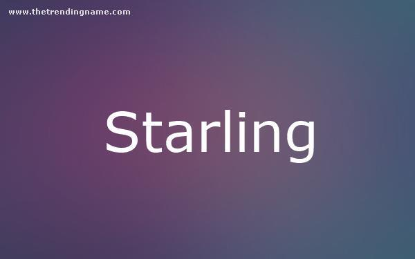 Baby Name Poster For Starling