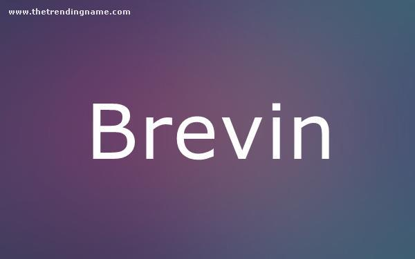 Baby Name Poster For Brevin