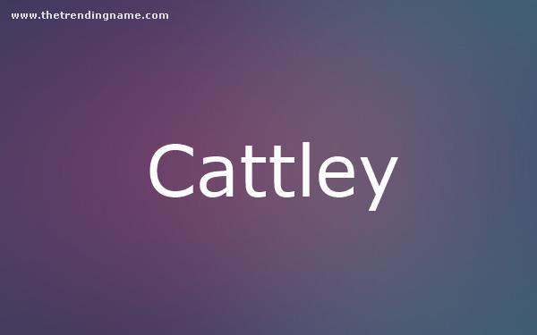 Baby Name Poster For Cattley