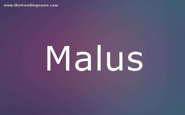 Baby Name Poster For Malus