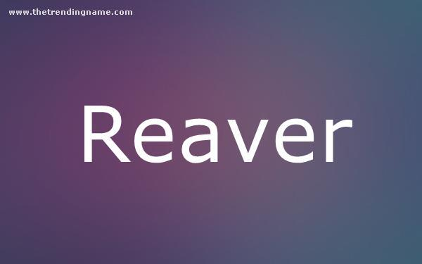 Baby Name Poster For Reaver