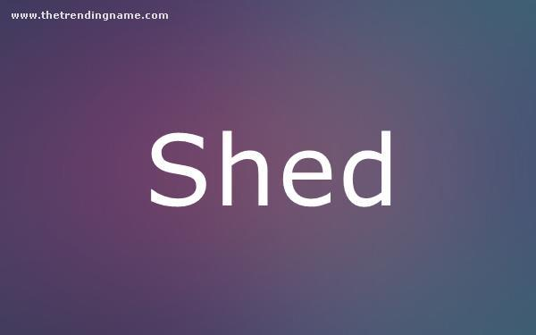 Baby Name Poster For Shed