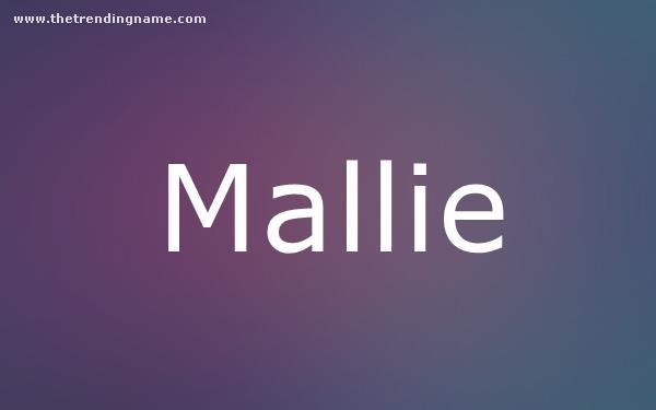 Baby Name Poster For Mallie