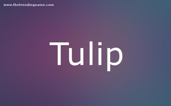 Baby Name Poster For Tulip