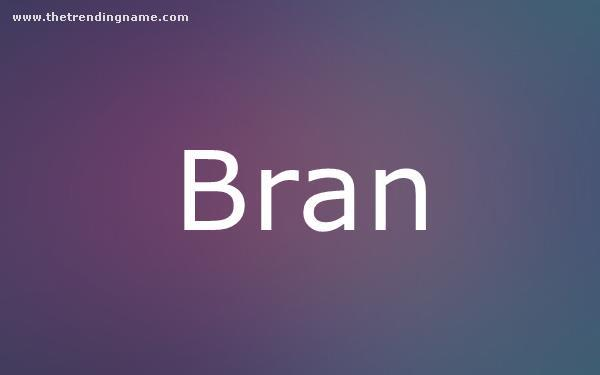 Baby Name Poster For Bran