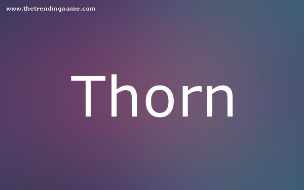 Baby Name Poster For Thorn