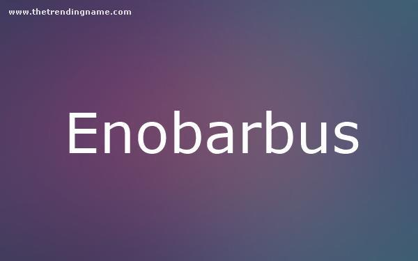 Baby Name Poster For Enobarbus