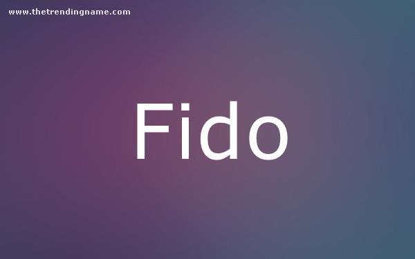 Baby Name Poster For Fido
