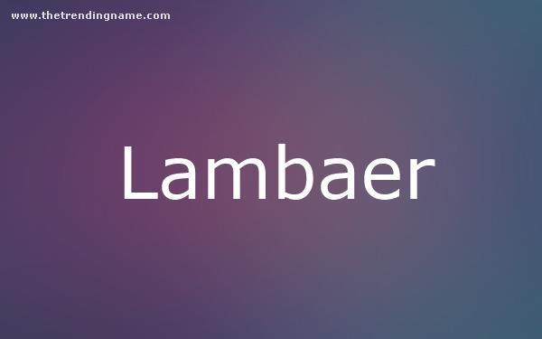 Baby Name Poster For Lambaer