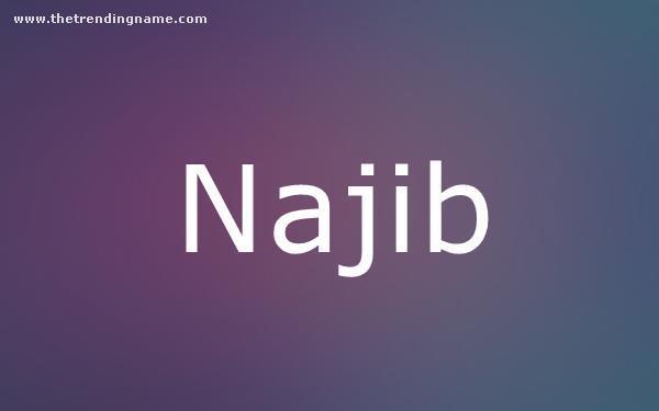 Baby Name Poster For Najib