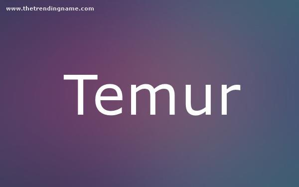 Baby Name Poster For Temur
